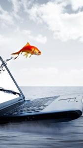 fantasy-computer-goldfish-creative-art-wallpaper-1136x640_8bdd084536c156bd844e9f2316fc4c8d_raw